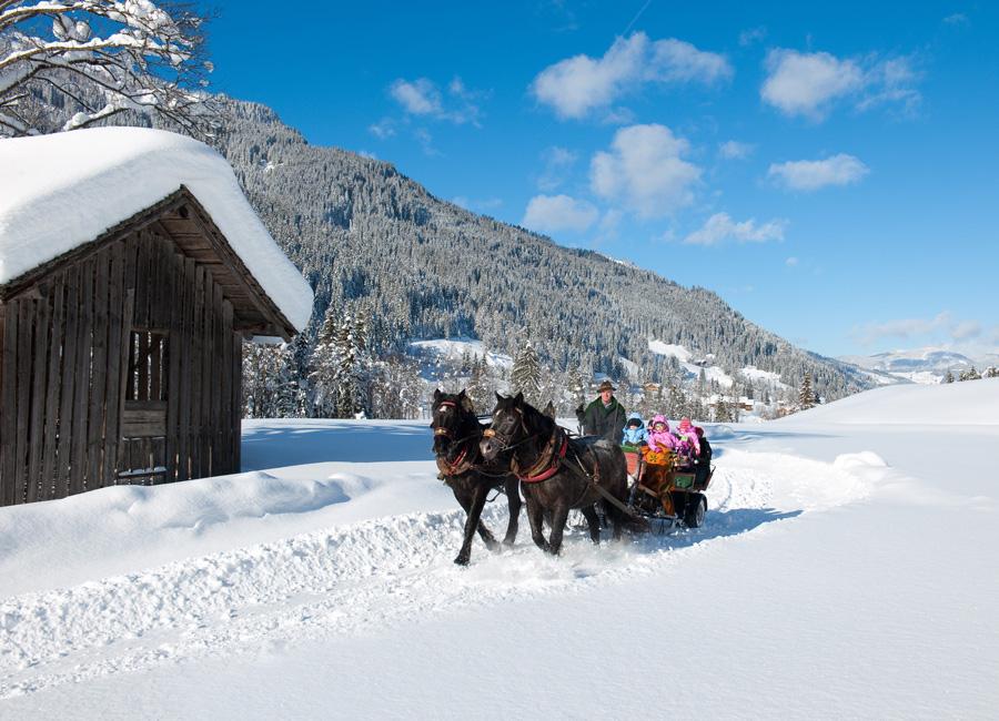 Hotel Grafenwirt - Pferdeschlittenfahrt