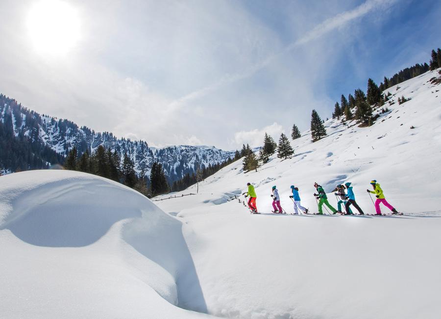 Hotel Grafenwirt - Schneeschuhwandern