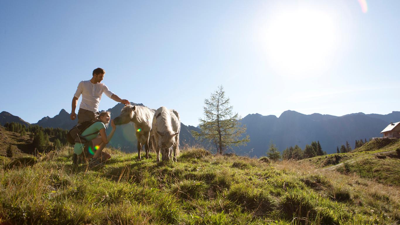 Hotel Grafenwirt - Wandern Pärchen Pony